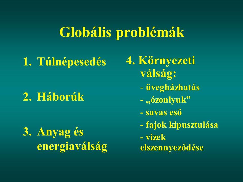 Globális problémák Túlnépesedés Háborúk Anyag és energiaválság