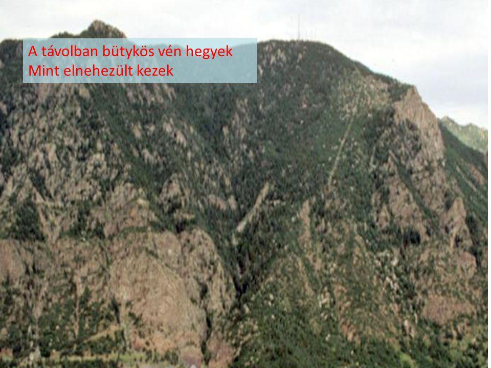 A távolban bütykös vén hegyek