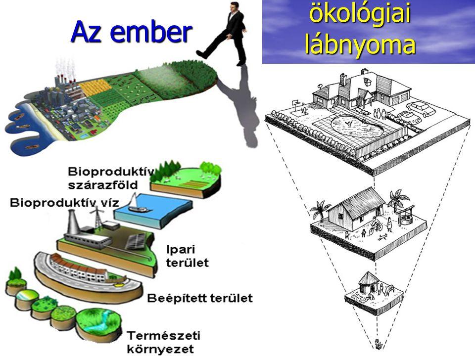 ökológiai lábnyoma Az ember