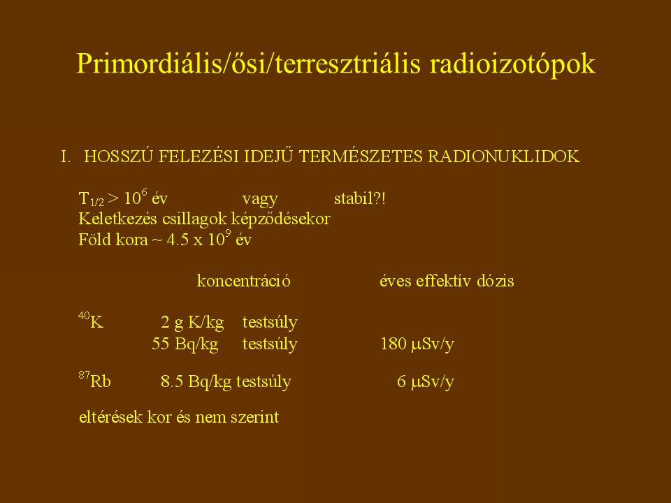 Primordiális/ősi/terresztriális radioizotópok