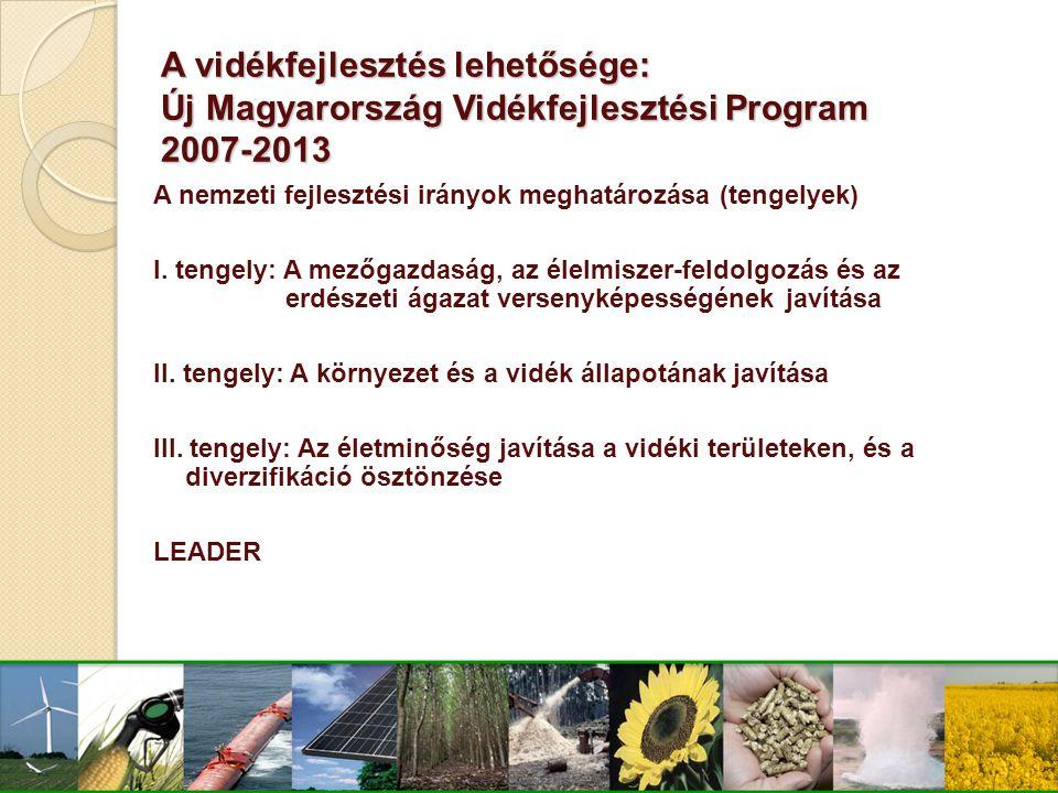 A vidékfejlesztés lehetősége: Új Magyarország Vidékfejlesztési Program 2007-2013