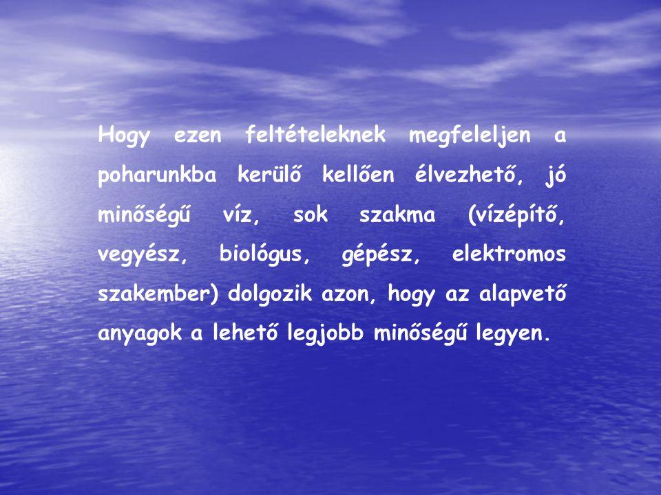 Hogy ezen feltételeknek megfeleljen a poharunkba kerülő kellően élvezhető, jó minőségű víz, sok szakma (vízépítő, vegyész, biológus, gépész, elektromos szakember) dolgozik azon, hogy az alapvető anyagok a lehető legjobb minőségű legyen.