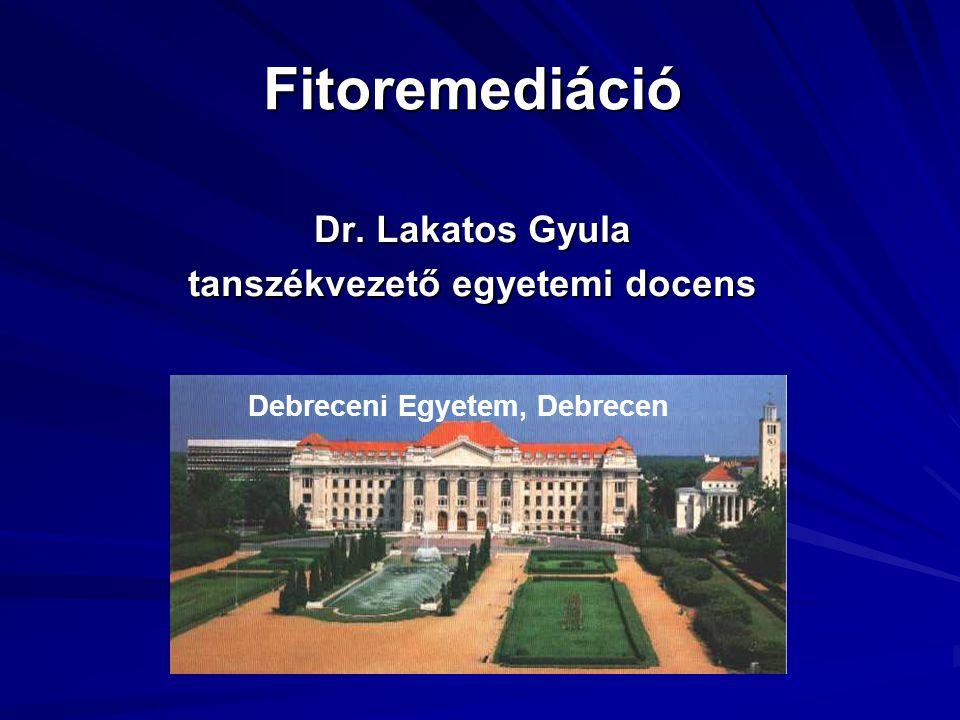 Dr. Lakatos Gyula tanszékvezető egyetemi docens
