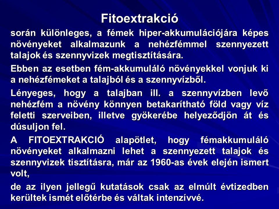 Fitoextrakció