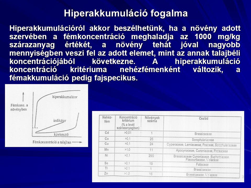 Hiperakkumuláció fogalma