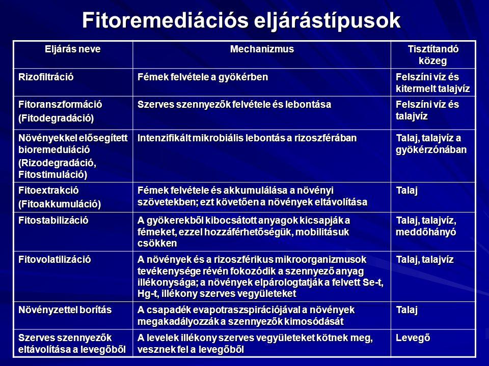 Fitoremediációs eljárástípusok