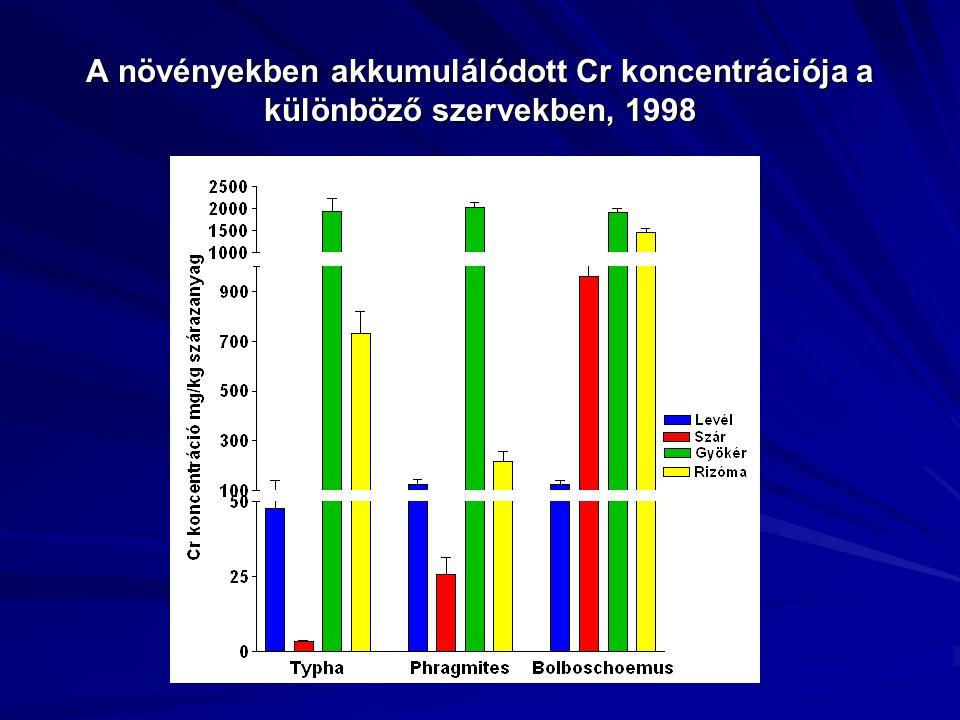 A növényekben akkumulálódott Cr koncentrációja a különböző szervekben, 1998