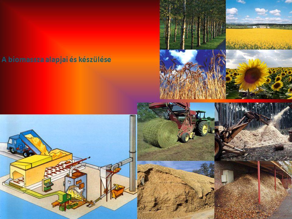A biomassza alapjai és készülése