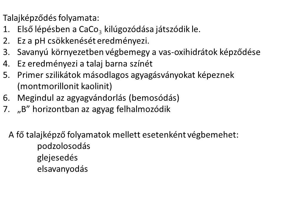 Talajképződés folyamata: