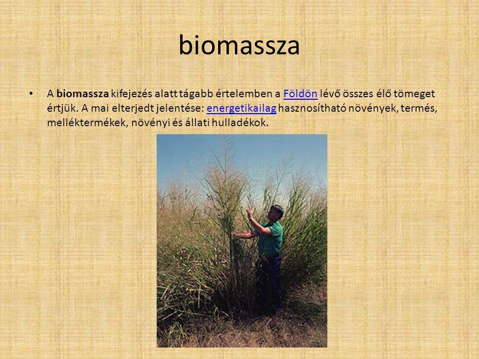 biomassza