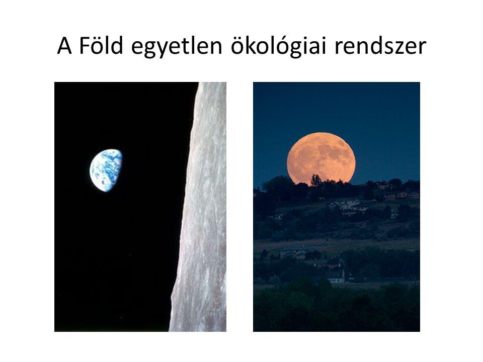 A Föld egyetlen ökológiai rendszer