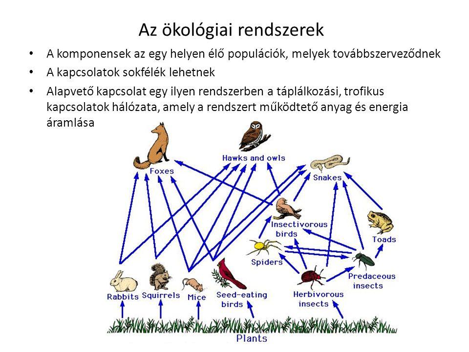 Az ökológiai rendszerek
