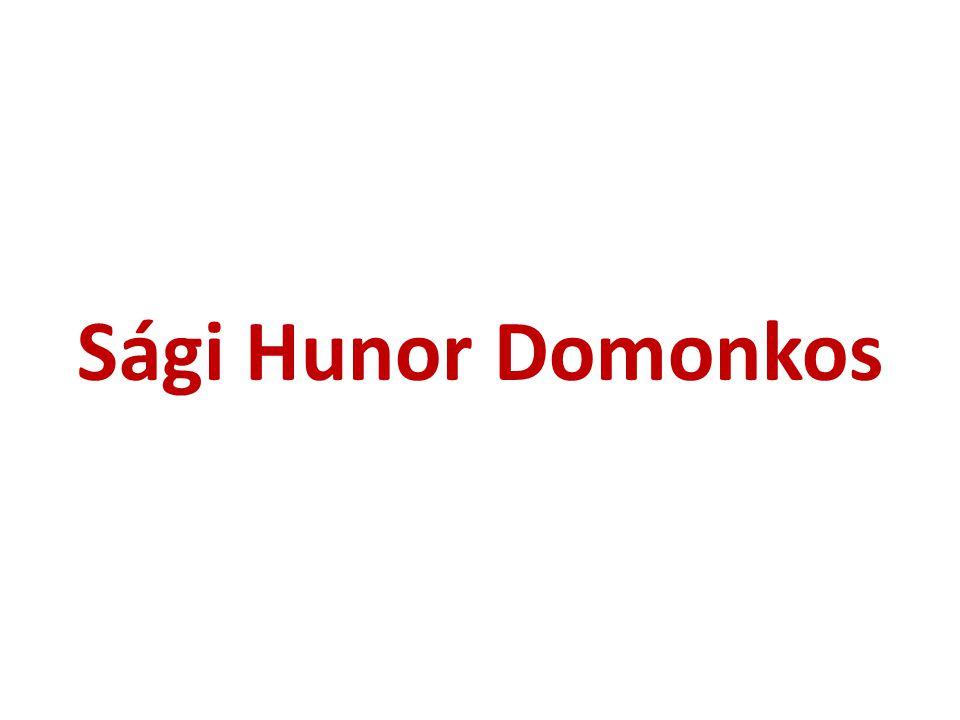 Sági Hunor Domonkos