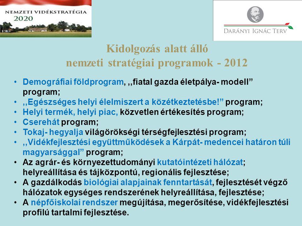 nemzeti stratégiai programok - 2012