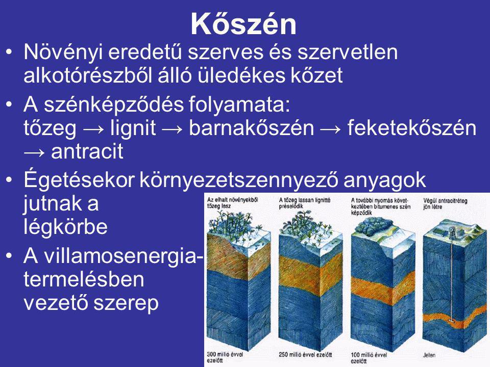 Kőszén Növényi eredetű szerves és szervetlen alkotórészből álló üledékes kőzet.