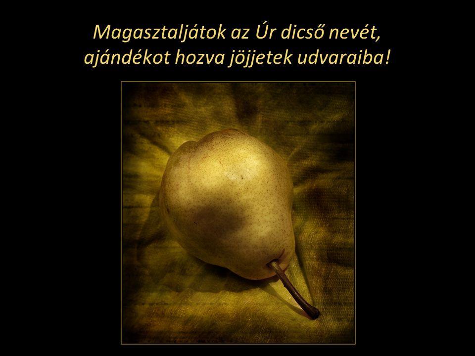 Magasztaljátok az Úr dicső nevét, ajándékot hozva jöjjetek udvaraiba!