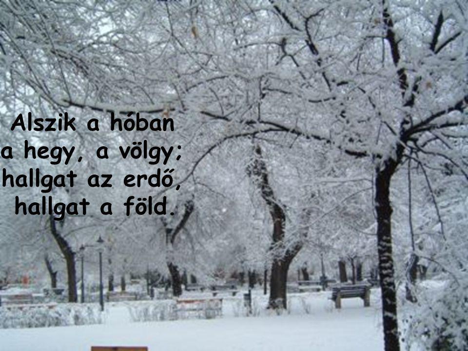 Alszik a hóban a hegy, a völgy; hallgat az erdő, hallgat a föld.