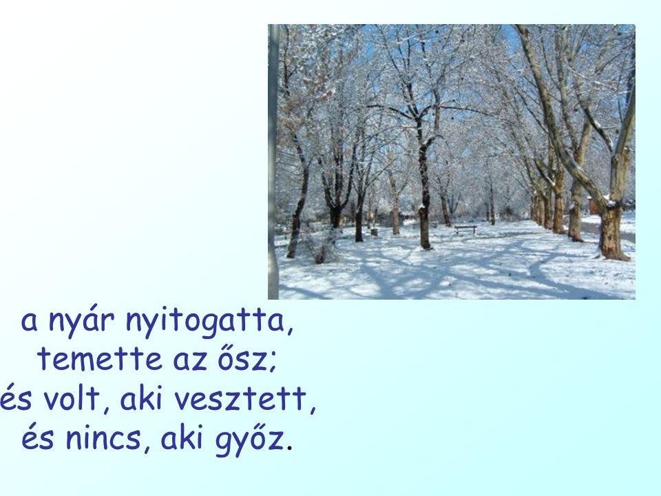 a nyár nyitogatta, temette az ősz; és volt, aki vesztett, és nincs, aki győz.