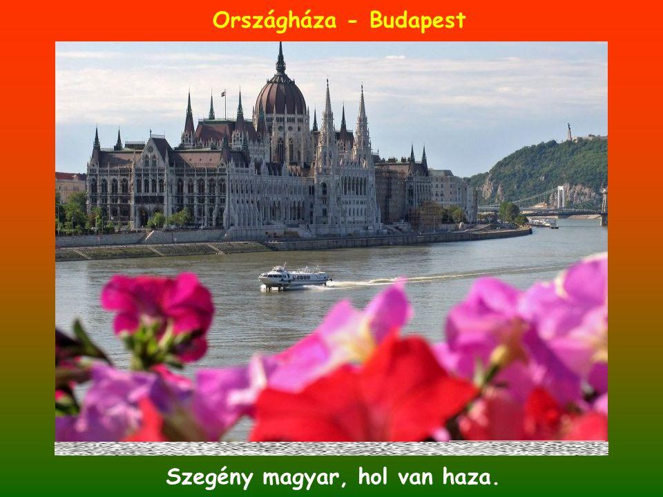 Szegény magyar, hol van haza.