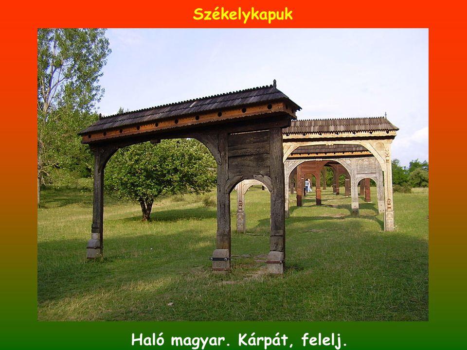 Haló magyar. Kárpát, felelj.