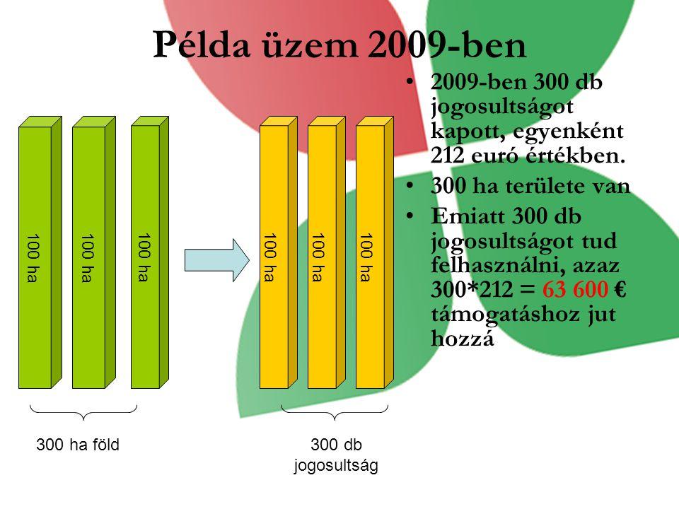 Példa üzem 2009-ben 2009-ben 300 db jogosultságot kapott, egyenként 212 euró értékben. 300 ha területe van.