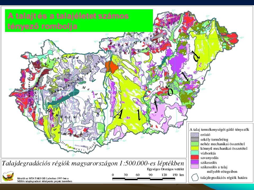 A talajt és a talajéletet számos tényező rombolja