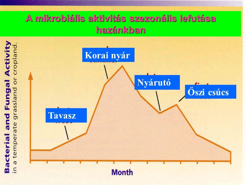 A mikrobiális aktivitás szezonális lefutása hazánkban