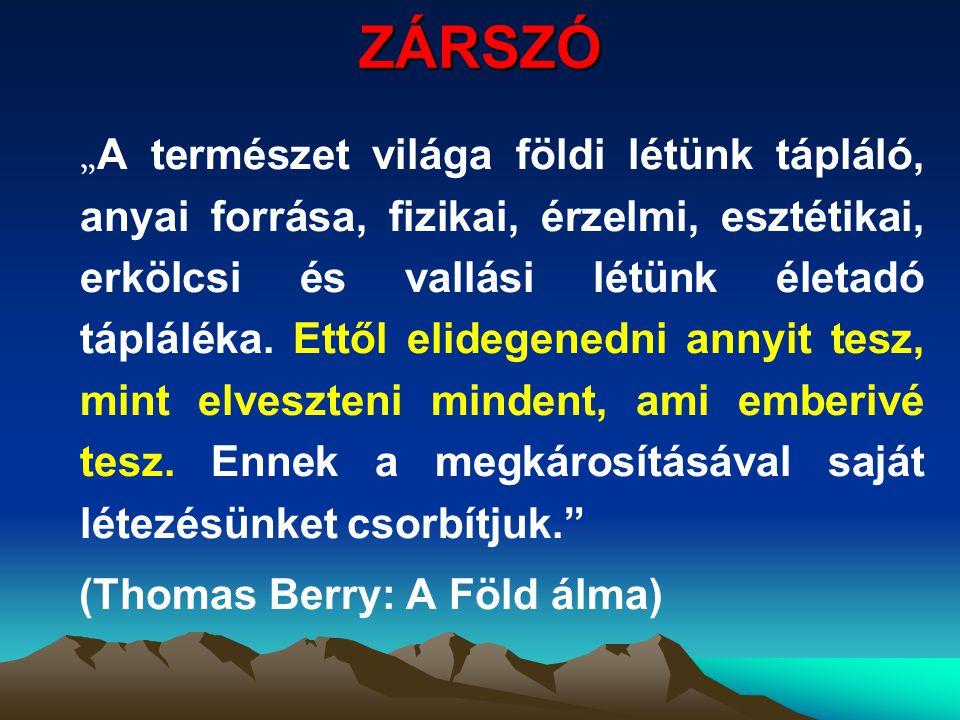 ZÁRSZÓ