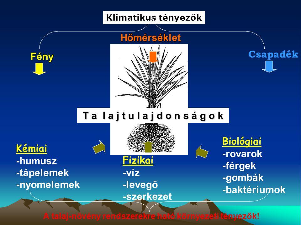 A talaj-növény rendszerekre ható környezeti tényezők!