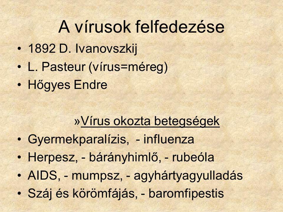 A vírusok felfedezése 1892 D. Ivanovszkij L. Pasteur (vírus=méreg)