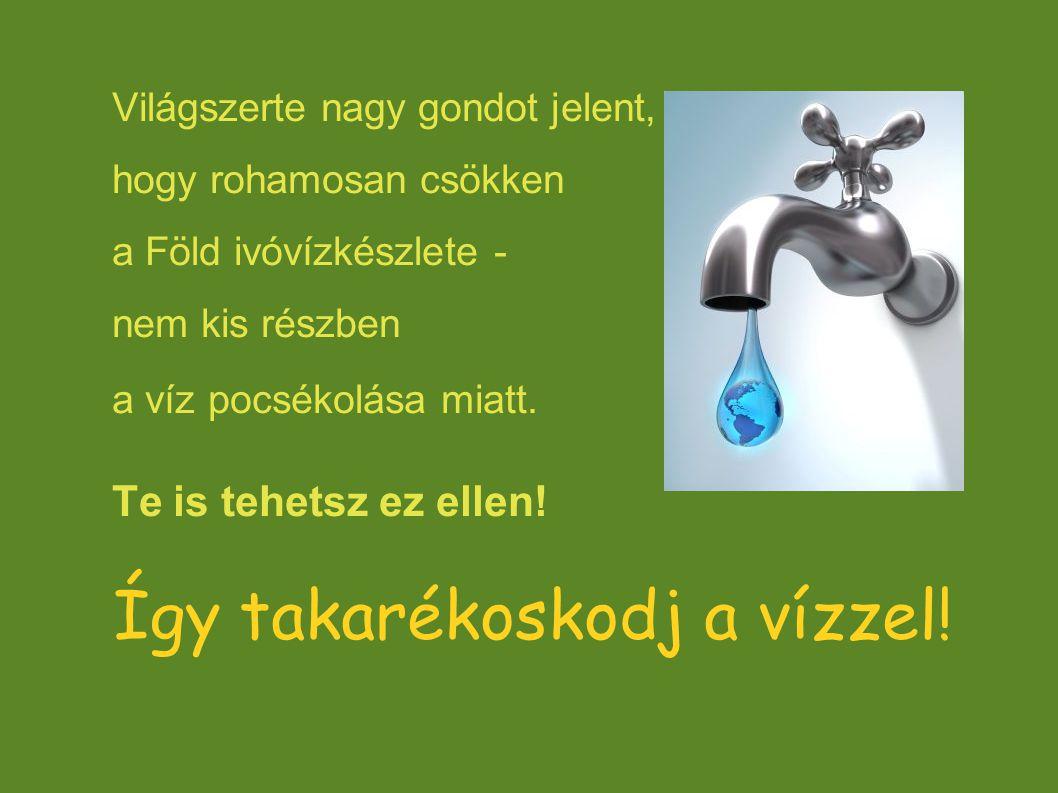 Így takarékoskodj a vízzel!