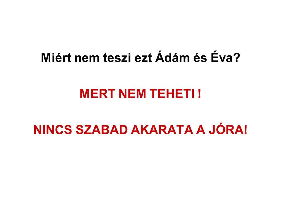 Miért nem teszi ezt Ádám és Éva NINCS SZABAD AKARATA A JÓRA!