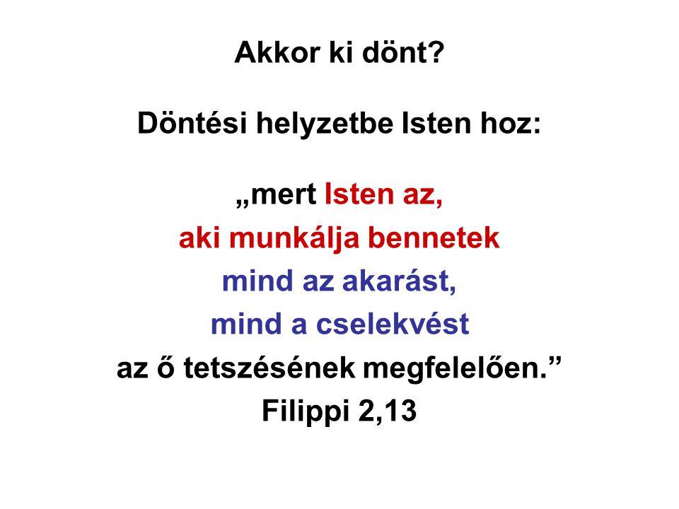 Döntési helyzetbe Isten hoz: az ő tetszésének megfelelően.