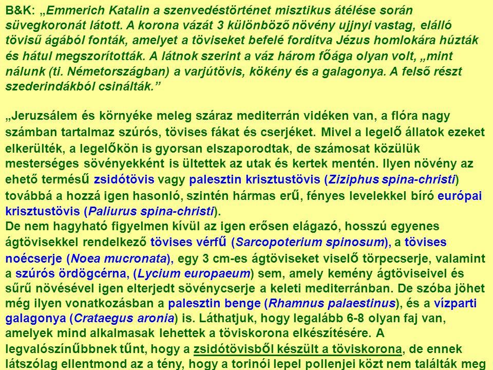 """B&K: """"Emmerich Katalin a szenvedéstörténet misztikus átélése során süvegkoronát látott."""