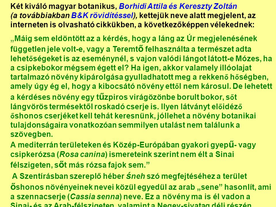 Két kiváló magyar botanikus, Borhidi Attila és Kereszty Zoltán (a továbbiakban B&K rövidítéssel), kettejük neve alatt megjelent, az interneten is olvasható cikkükben, a következőképpen vélekednek: