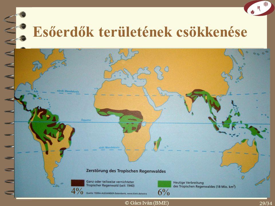 Esőerdők területének csökkenése