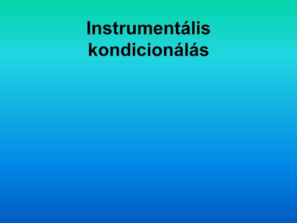 Instrumentális kondicionálás