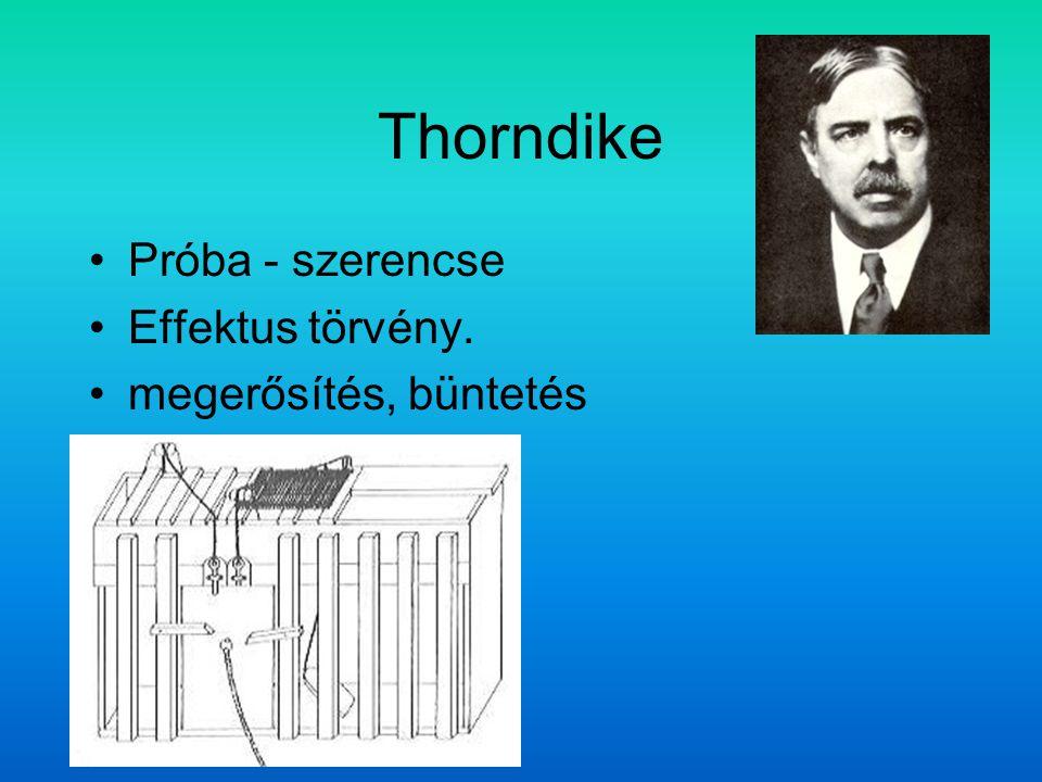 Thorndike Próba - szerencse Effektus törvény. megerősítés, büntetés
