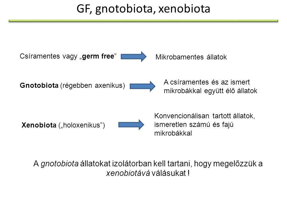 GF, gnotobiota, xenobiota