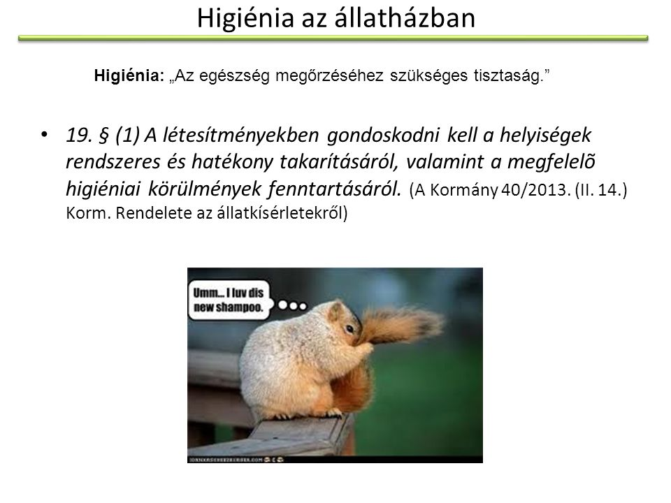 Higiénia az állatházban