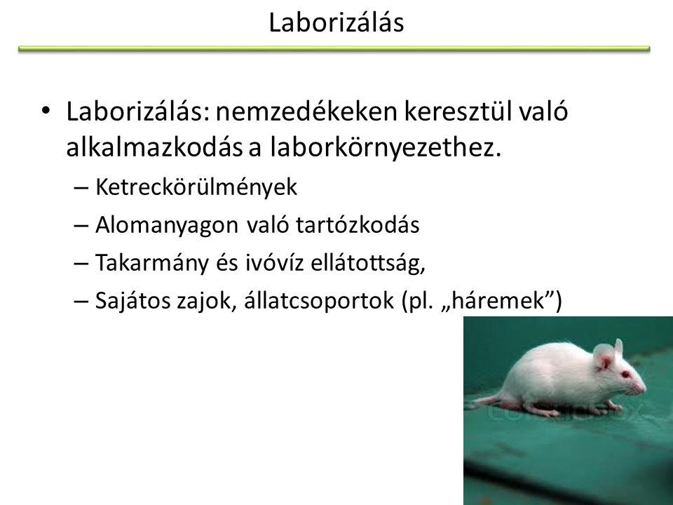 Laborizálás Laborizálás: nemzedékeken keresztül való alkalmazkodás a laborkörnyezethez. Ketreckörülmények.