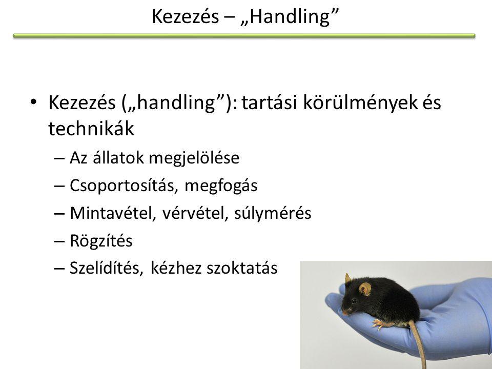 """Kezezés (""""handling ): tartási körülmények és technikák"""