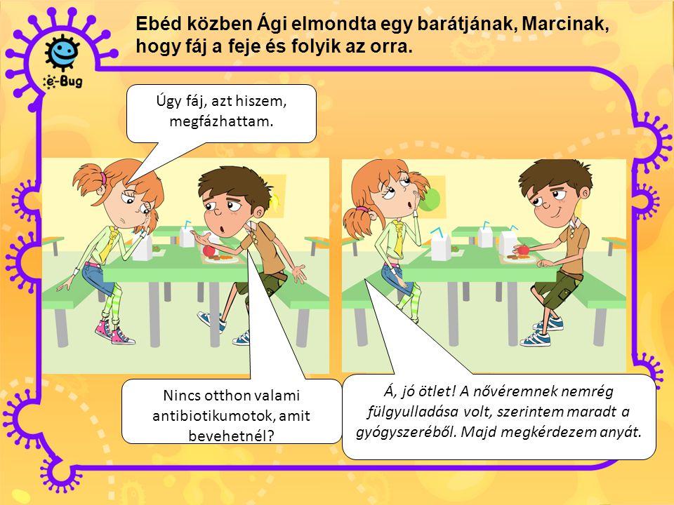 Ebéd közben Ági elmondta egy barátjának, Marcinak, hogy fáj a feje és folyik az orra.