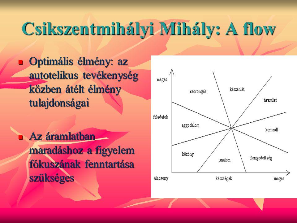 Csikszentmihályi Mihály: A flow
