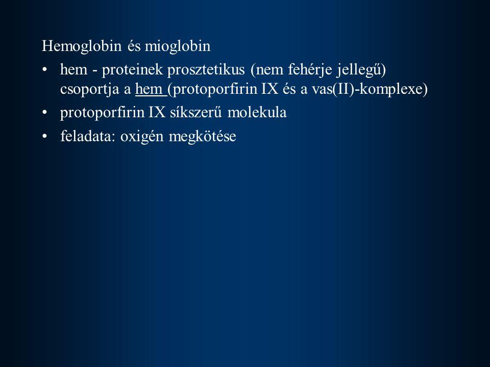 Hemoglobin és mioglobin