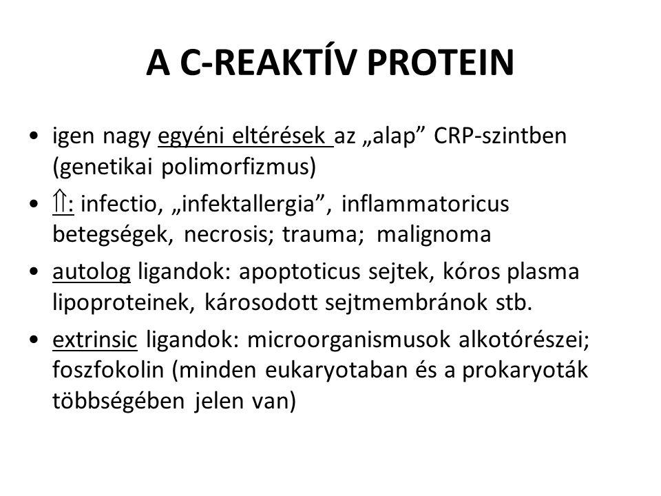 """A C-REAKTÍV PROTEIN igen nagy egyéni eltérések az """"alap CRP-szintben (genetikai polimorfizmus)"""