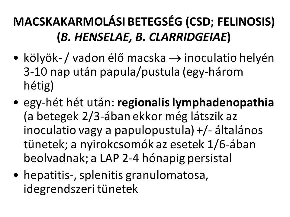 MACSKAKARMOLÁSI BETEGSÉG (CSD; FELINOSIS) (B. HENSELAE, B