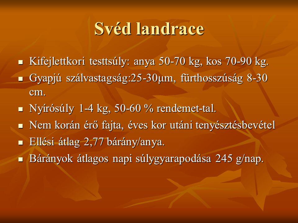 Svéd landrace Kifejlettkori testtsúly: anya 50-70 kg, kos 70-90 kg.