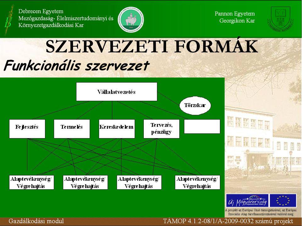 SZERVEZETI FORMÁK Funkcionális szervezet