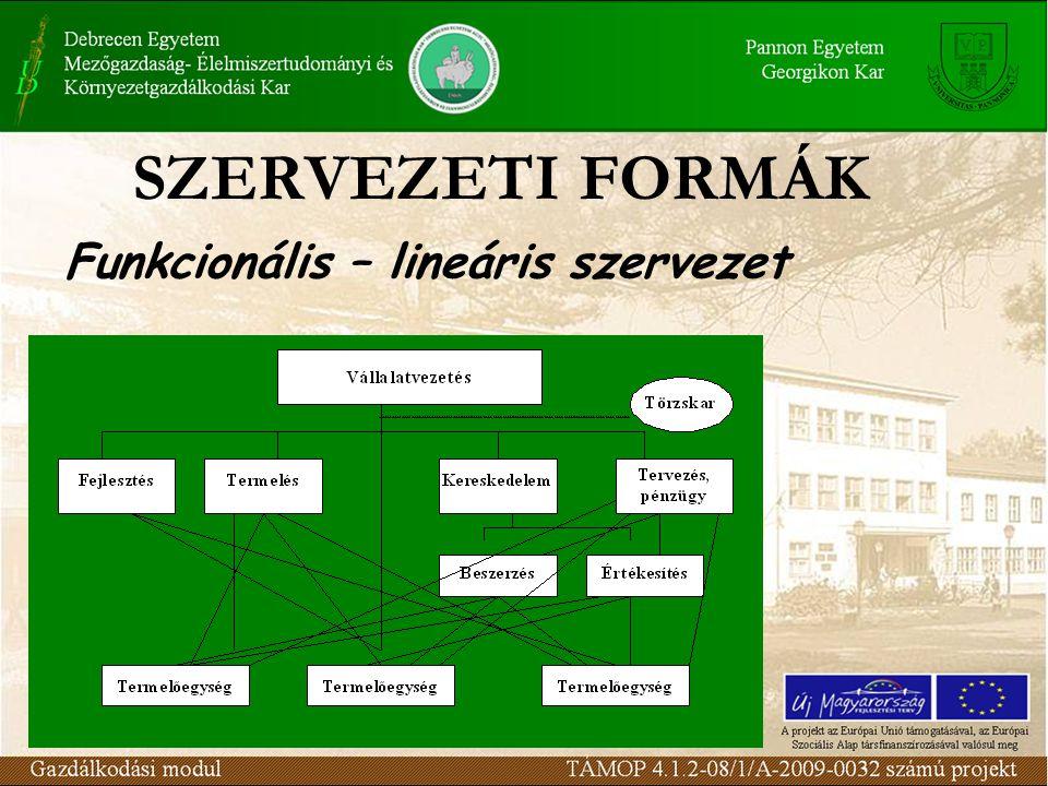 Funkcionális – lineáris szervezet